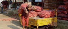 नयाँ स्थानमा विराटनगरको गुद्री बजार सञ्चालन