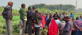 सुनसरीको भोक्राहा गाउँपालिकामा बीउ उत्पादन तथा भण्डारण केन्द्र निर्माण हुने